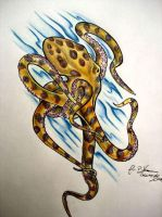 blue ringed octopus by firepils