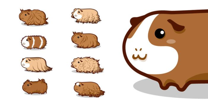 Guinea Pigs by Aaron-Randy
