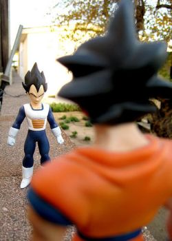Vegeta and Goku . by DBpictures