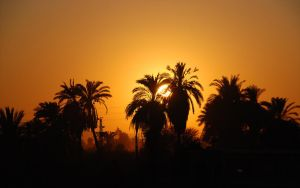 sunset at nile - Egypt 07-2011 by skymax2k