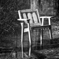 Chair a Reflection by Zemni