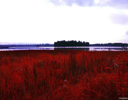 Red Herb,Black Water,Pink Sky. by moppaa