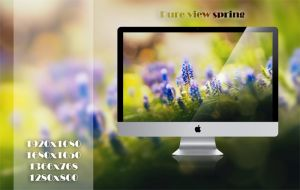 Wallpaper IV: Pure view spring by NajborGraphics