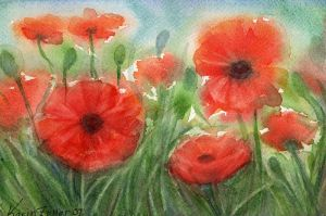 poppies II by karincharlotte