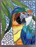 Catalina Macaw Mosaic WIP - 02 by Dreamspirit