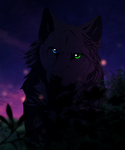 The Black Wolf by Leyver