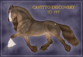 Cavitto Discovery ID 197 by Cariannarz