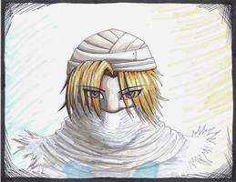 Sheik - copic drawing by Wolf-Goddess13