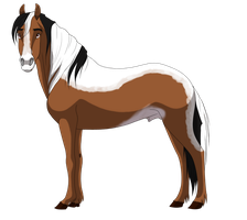 Stallion adopt 10 CLOSED by petshop101