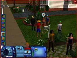 The Strawhats in Sims 3 by Colhan3000
