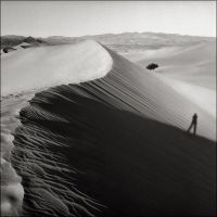 Walking the Dunes by aponom