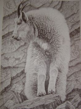 Mountian goat by Towinckdesigns