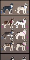 - Lots of puppies - by Sharaiza