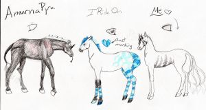Christmas foal imports by naomithewolf