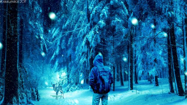 Winter Journey of A Sad Hooded Man by bukanumairoh