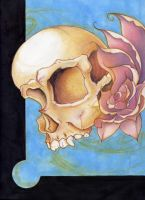 skull and roses colored by whoiscid