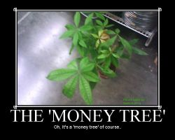 Demotivational: Money Tree by Nashi-Kurima