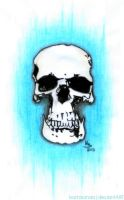 The Skull by bartosanda