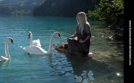 Swan Lake 8 by Kuoma-stock