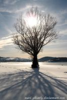winter Tree by Mari-Ghostly