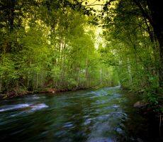green river by KariLiimatainen