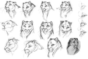 Snow Me - Facial Expressions by DeyVarah