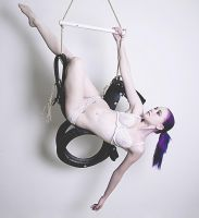 Tire Swing Horse 4 by MordsithCara