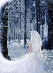 Walk through Snow-Valley-Woods by Neyona