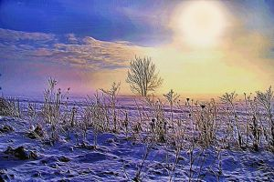 Winterscape by montag451