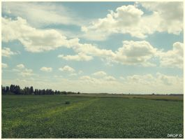 Country. by DropOfTime