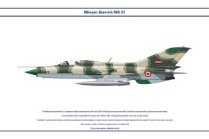 MiG-21 Egypt 2 by WS-Clave