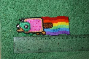 Nyan Perry Mini Hama by inu-chan-free