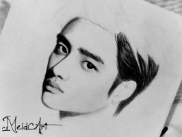 D.O EXO (overdose) by meidamelina