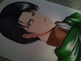 Levi by Liyahhh2014