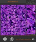 Flower Pattern 1.0 by Sed-rah-Stock