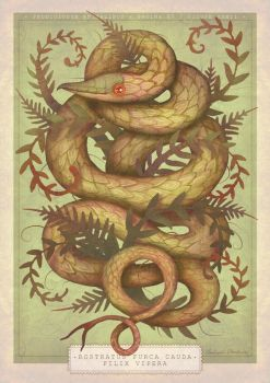 The Fern Viper by V-L-A-D-I-M-I-R