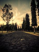 Walking Path by Andrei120