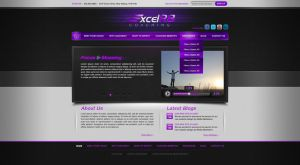 ExcelR8 website design by Stephen-Coelho
