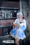 Weiss Schnee Library by HollyGloha