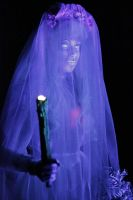 More Haunted Mansion bride in TDL by hentaib2319