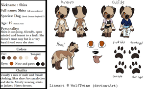 Shira Ref by TotallyNotaWolf