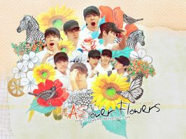 HAE over flowers by ROY6199