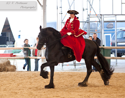 Sidesaddle Friesian_5 by CalyHoney