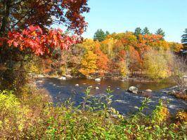 fall 08 on the Contoocook 3 by crazygardener