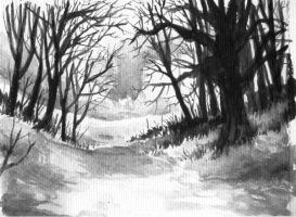 Black and White Forest by Ian-Terry