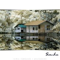 Sentani Lake by aldry