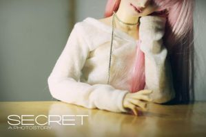 Secret: A Photostory by dollstars