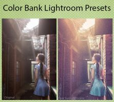 Color Bank Lightroom Presets by mudgalbharat