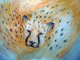 Cheetah by TheFailedDream