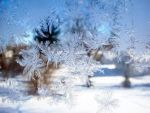 Frost. by MorganMalice